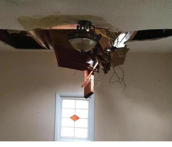 Tree Falls Through Roof Before