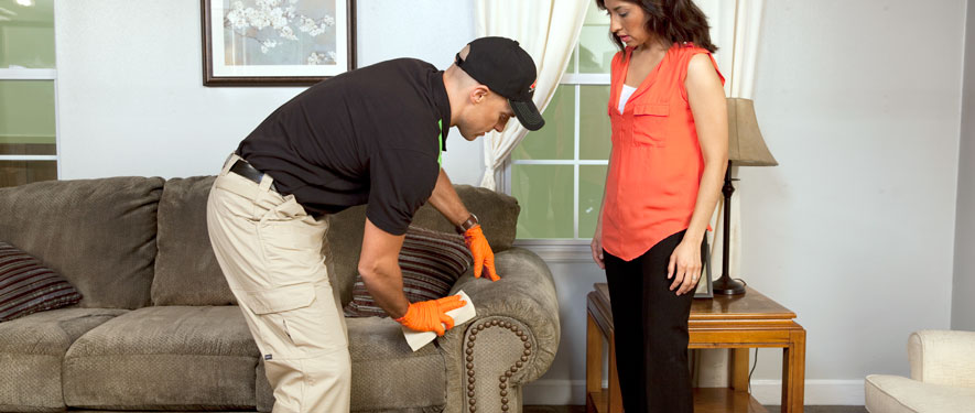 New Albany, IN carpet upholstery cleaning